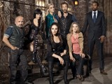 Lost Girl (Season 4)