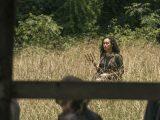 The Walking Dead (903) - Warning Signs